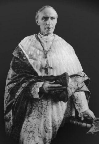 Désiré-Joseph Mercier (Publiek Domein - wiki)
