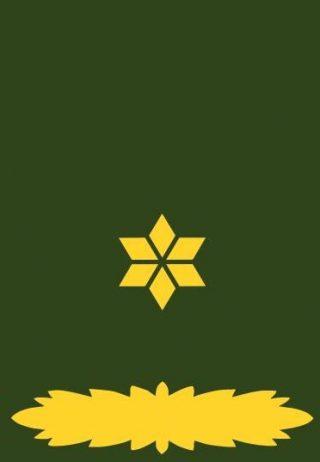 Onderscheidingsteken van een majoor bij de Nederlandse landmacht (CC BY-SA 3.0 - JrPol - wiki)