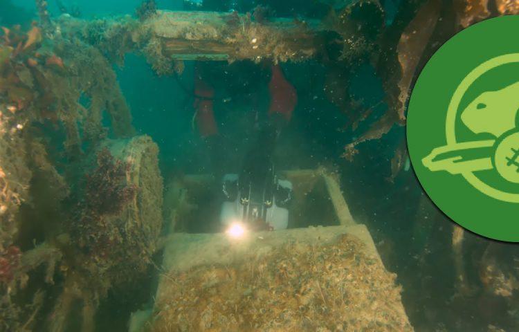 Onderwaterbeelden van de HMS Terror - Still YouTube
