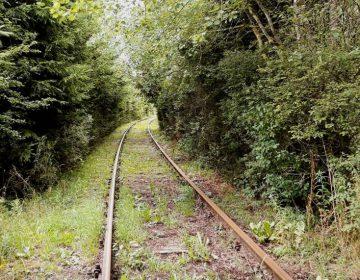 Deel van het traject van de Vennbahn tussen Leykaul en Sourbrodt, 2019 (Foto: Historiek)