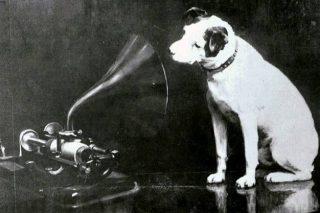 De originele plaat van Francis Barraud met Nipper naast een fonograaf (en dus niet naast een platenspeler) - Publiek Domein / wiki