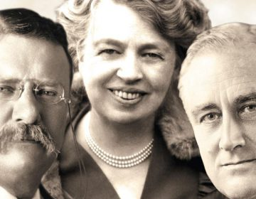 Fragment uit de cover van 'De Roosevelts'