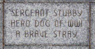 Stubby's naam in het Liberty Memorial, Kansas City. (Publiek Domein - wiki)