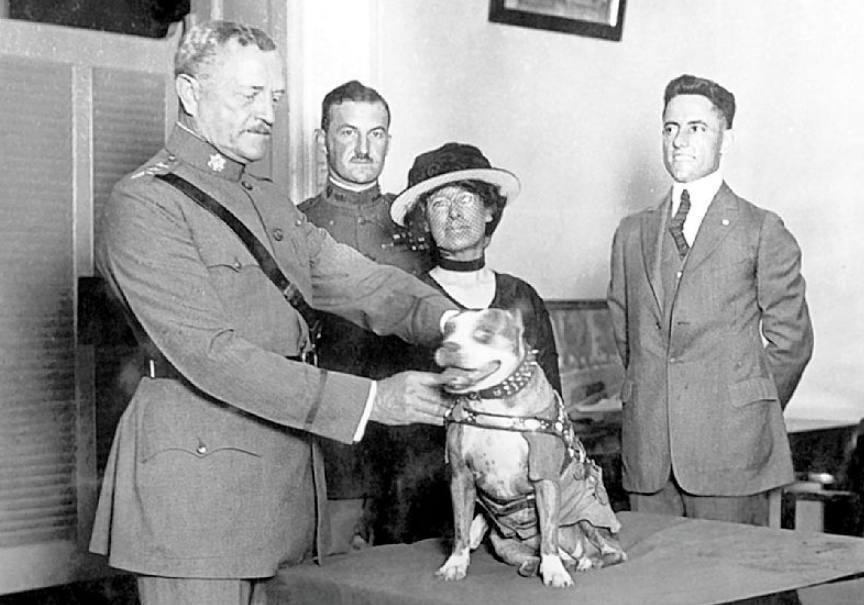 Sergeant Stubby krijgt een nieuwe medaille van generaal John J. Pershing, 1921 (Publiek Domein - wiki)