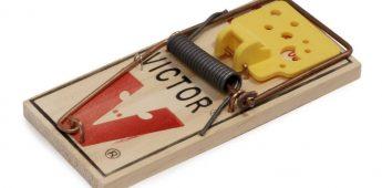 De uitvinding van de muizenval