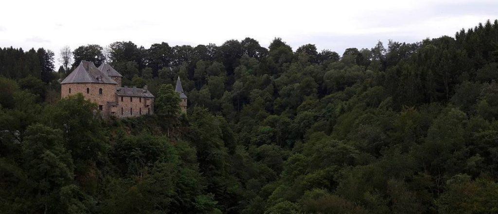 Reinhardstein gezien vanaf de vallei