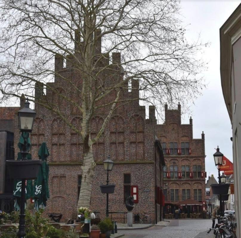 Het stadhuis (achterzijde) en daarachter de Waag in Doesburg. | Foto H.M.D. Dekker.