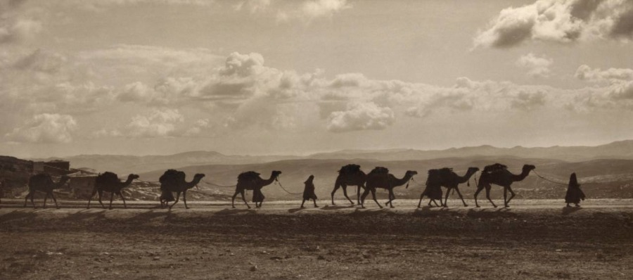 Foto van een karavaan in Egypte, 1918