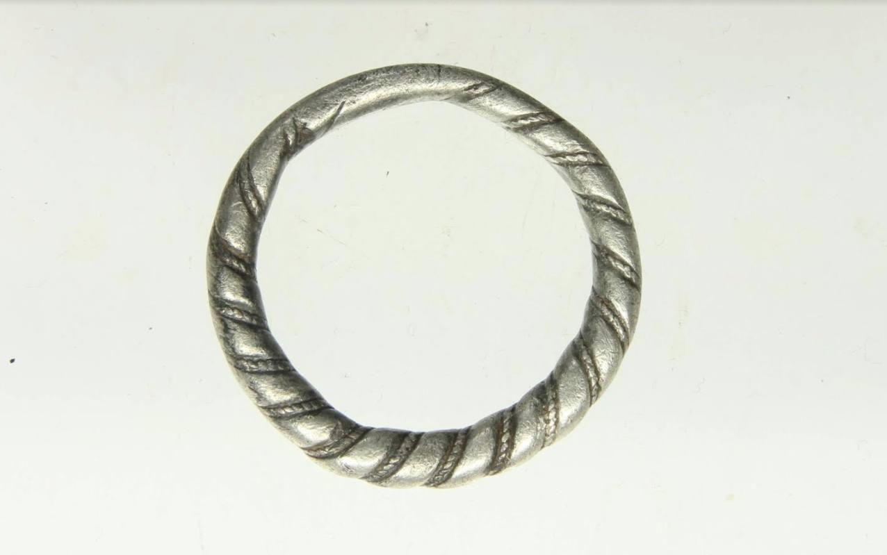 Persfoto van de Vikingring van Hoogwoud (RMO - Julius van Roemburg)