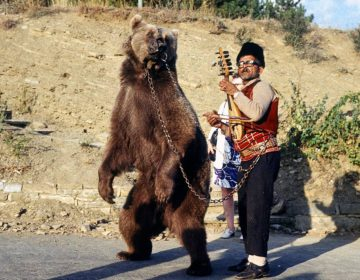 Dansende beer in Bulgarije, ca. 1970