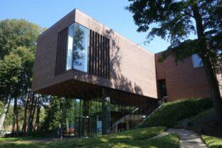 Lisser Art Museum (LAM)