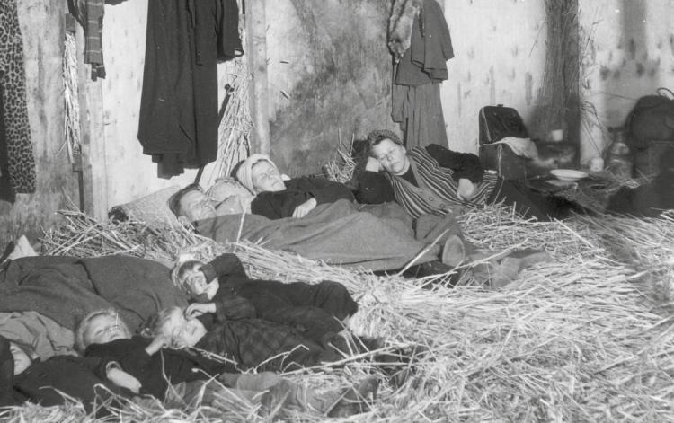 Duitse vluchtelingen brengen de nacht door in het hooi. Bron: Getty Images. Uit: Bevrijdingsroute Europa