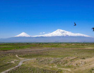De Ararat