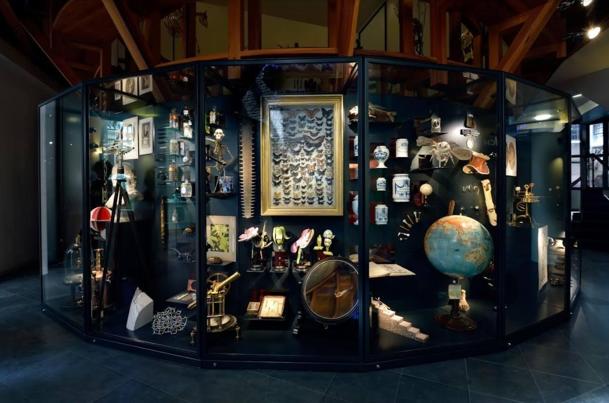 Rariteitenkabinet Rijksmuseum Boerhaave