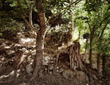 De staat van de heuvelrand in Auvers-sur-Oise op 30 mei 2020