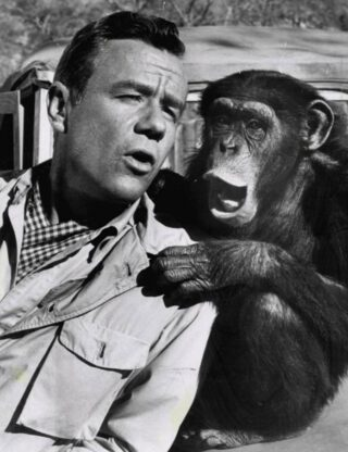 Marshall Thompson als dr. Tracy samen met chimpansee Judy