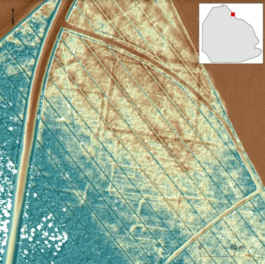 Een gedetailleerde hoogtekaart van de bosbodem in het Kuinderbos (oostkust voormalige Zuiderzee). In de voormalige bosbodem zijn de laatste restanten van laatmiddeleeuwse verkaveling (sloten) rondom het verdronken dorp Veenhuizen als een systeem van lijnen en rechthoeken te zien.