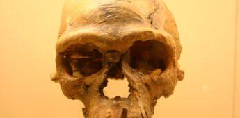 De paleoantropologische site van Djebel Irhoud