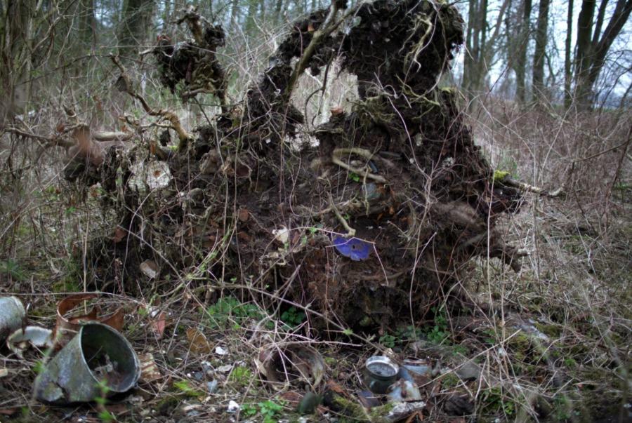 Friescheveen, huisvuil onder omgewaaide bomen