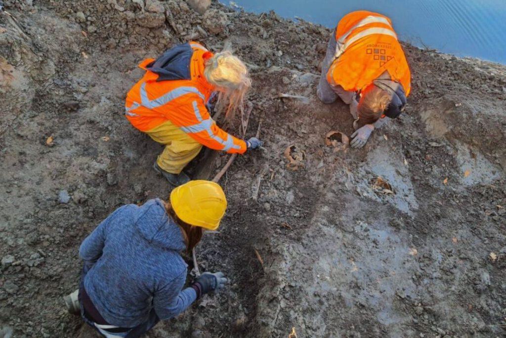 Archeologen onderzoeken een skelet