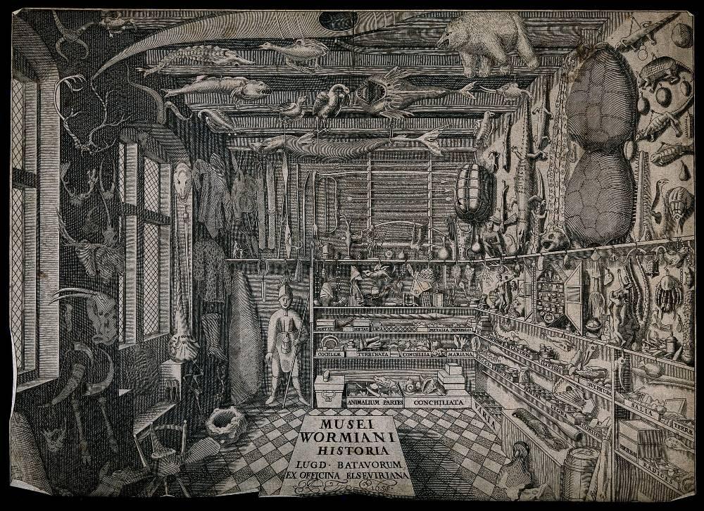 Rariteitenkabinet van de Deense wetenschapper Ole Worm. Ets van G. Wingendorp uit 1655. Wellcome Library no. 571887i