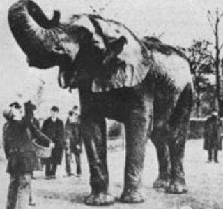 Jumo, voor 1886