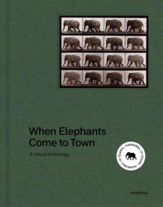 When Elephant Come to Town