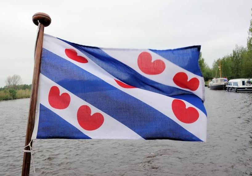 De vlag van Friesland met pompeblêdden