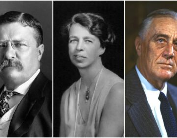 De Roosevelts - Theodore, Eleanor en Franklin Delano