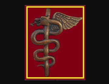 Medisch insigne met een esculaap