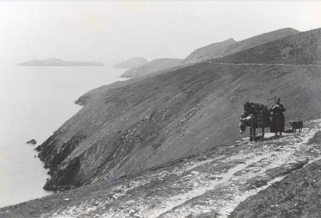 Een eilandbewoner vervoert per ezel een lading turf op Great Blasket