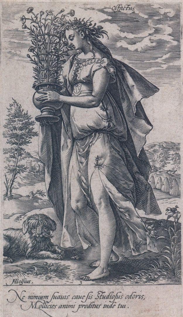 Hendrick Goltzius, Offactus (de reuk), 1578, Gravure, Rijksmuseum Amsterdam