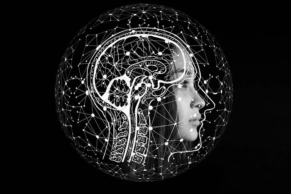 De hersenen en de verkleurde herinnering