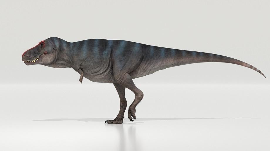 Afbeelding van de wandelende dinosaurus