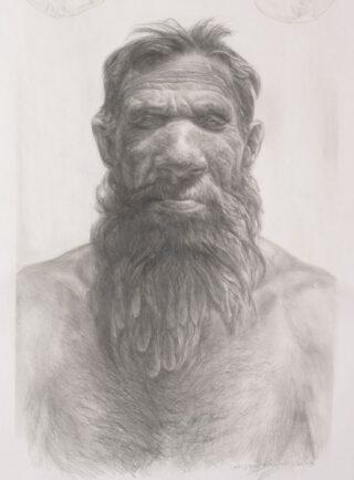 Reconstructietekening Neanderthaler 'Krijn'