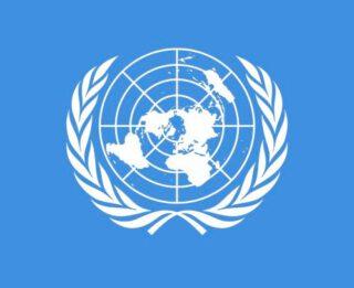 Detail van de vlag van de Verenigde Naties
