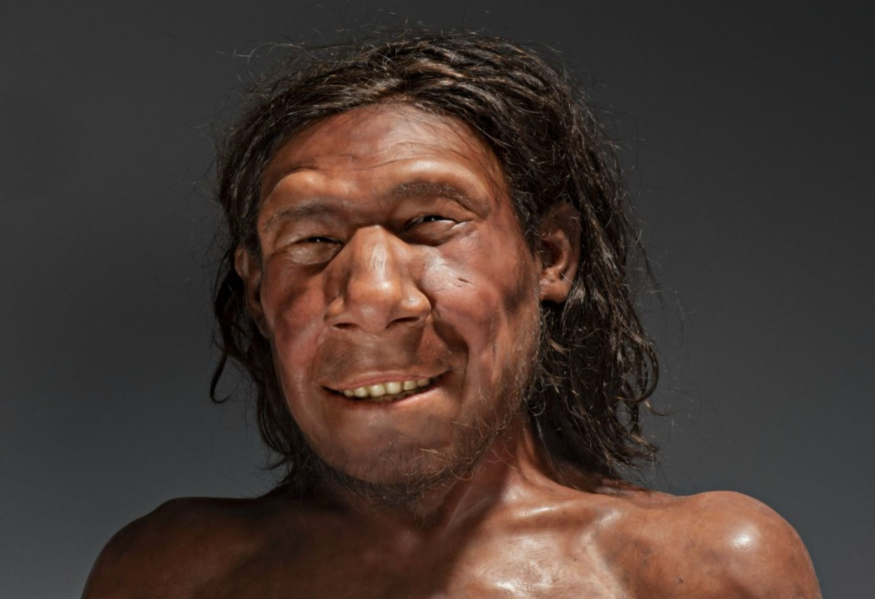 De gezichtsreconstructie van Krijn, de oudste Neanderthaler van Nederland