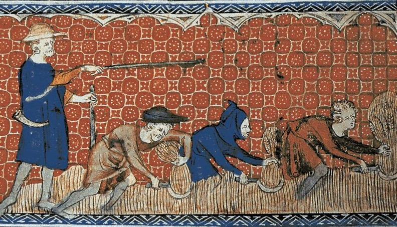 Landarbeiders tijdens de oogst, ca. 1310
