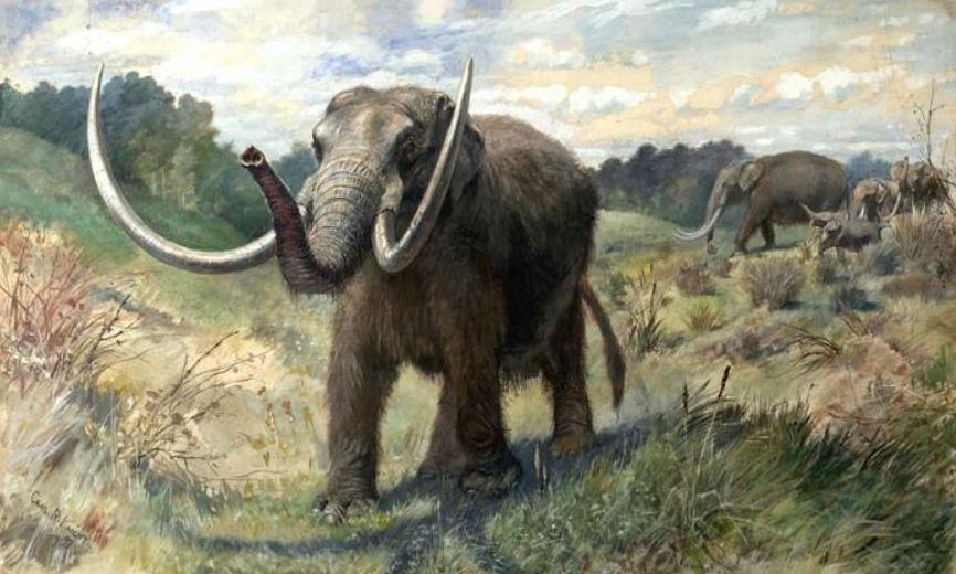 Mastodont, verbeeld door Charles R. Knight in 1897